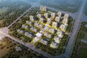 东丽东丽开发区新城悦隽核心词元楼盘新房真实图片