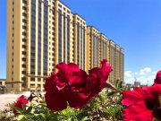 高新区高新区欣苑花圃楼盘新居实在图片