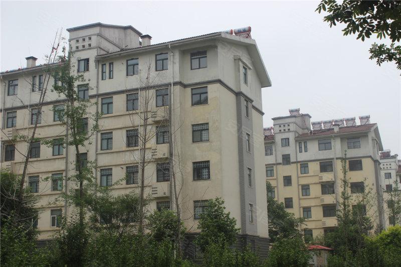 鹤壁天润嘉城-实景图(3) - 鹤壁安居客