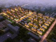 天津西青海泰产业园万科·西华府楼盘新房真实图片