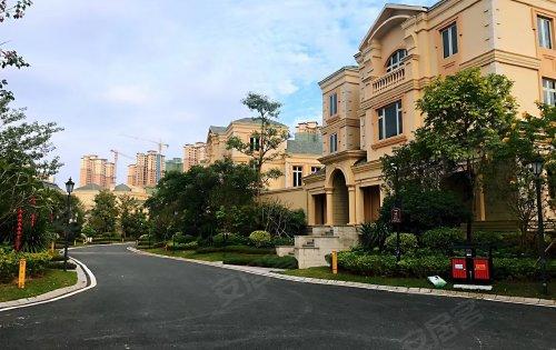 联排别墅,私信别墅,均在售,欢迎高层了解洋房多少钱一屋树平米图片