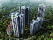 西乡塘新阳路四季绿洲楼盘新房真实图片