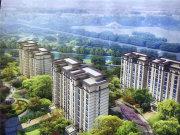颍东区颍东区安建枫林源筑楼盘新房真实图片
