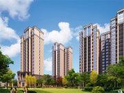 钢城区钢城区东海花园楼盘新房真实图片