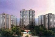 北京周边廊坊太阳城楼盘新房真实图片