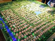 上海松江洞泾长泰西郊别墅楼盘新房真实图片