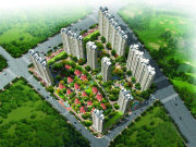 杭州钱塘大学城北杭州碧桂园楼盘新房真实图片