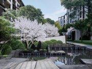 青岛胶州市少海新城中海·如院楼盘新房真实图片