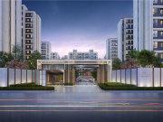 上海松江松江老城国贸凤凰原楼盘新房真实图片