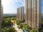 上海奉贤南桥绿地·铂晶舍楼盘新房真实图片