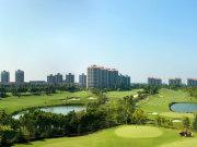 上海金山朱泾上海高尔夫社区汤泉美地城楼盘新房真实图片