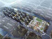 上海金山枫泾世纪金源梧桐印象楼盘新房真实图片