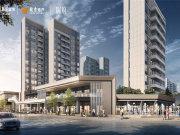 广州南沙明珠湾华润置地瑞府商铺楼盘新房真实图片