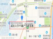 深圳龙岗平湖武汉大学平湖产学研基地