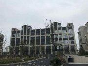 上海闵行浦江茸锦浦江科技园楼盘新房真实图片