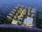 上海金山金山新城碧桂园凤凰城楼盘新房真实图片