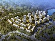 重庆北碚蔡家新天泽樾麓台楼盘新房真实图片
