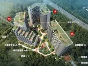 广州番禺大学城碧桂园星荟楼盘新房真实图片