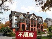 杭州临安临安银城青山湖畔临枫园楼盘新房真实图片
