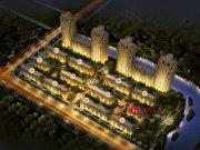 杭州钱塘金沙湖德信中外公寓楼盘新房真实图片