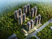 深圳龙岗龙岗中心城清林半山楼盘新房真实图片