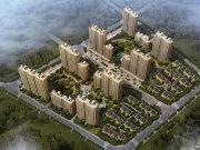 杭州钱塘沿江宋都橄榄墅楼盘新房真实图片