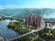长沙望城斑马湖紫鑫中央广场楼盘新房真实图片