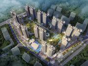 惠州大亚湾西区碧桂园城央印象楼盘新房真实图片