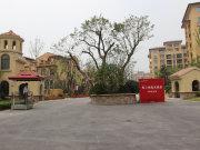 上海金山金山新城上实海上纳缇商铺