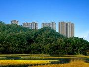 惠州博罗县罗阳水映山楼盘新房真实图片